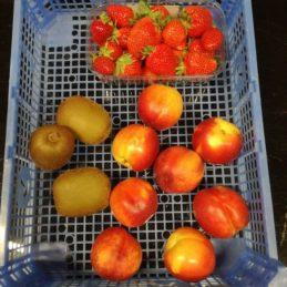 panier-de-fruits