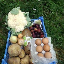 panier-légumes-29-juin