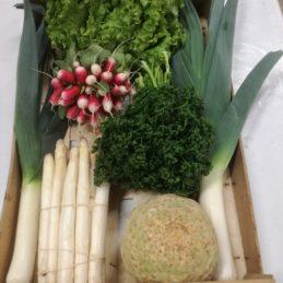 grand-panier-de-légumes