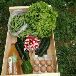grand-panier-légumes